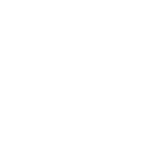 Logo The Story Tailors